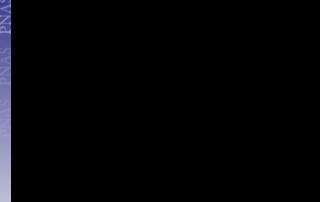 pnas.201213594SI